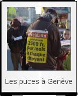 Les puces à Genève